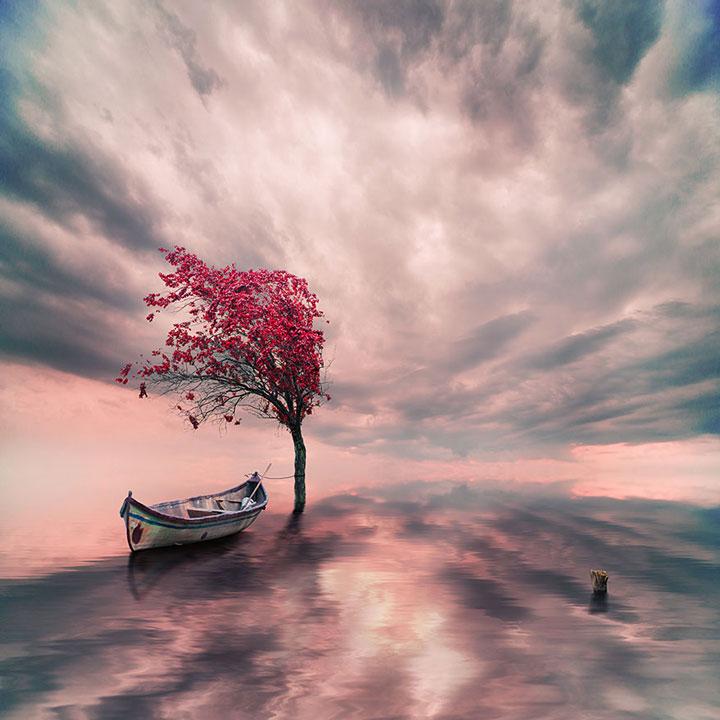 plongez-dans-lunivers-feerique-de-caras-a-travers-une-magnifique-serie-de-38-photographies7