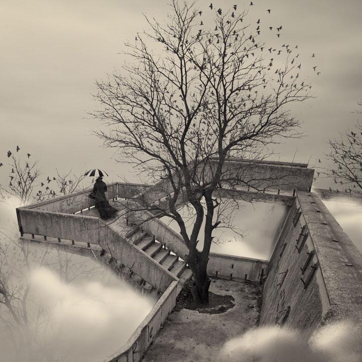 plongez-dans-lunivers-feerique-de-caras-a-travers-une-magnifique-serie-de-38-photographies31