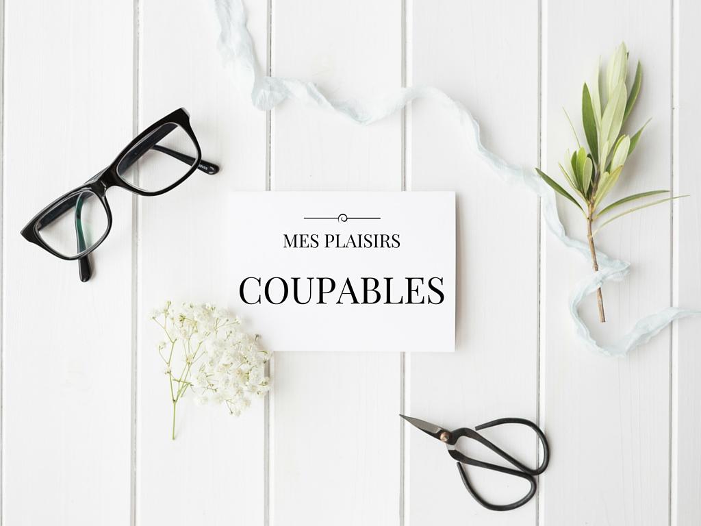 mesplaisirscoupables_anythingispossible